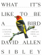 Cover Image: What It's Like to Be a Bird