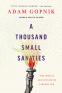Cover Image: A Thousand Small Sanities