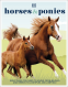 Cover Image: Horses & Ponies