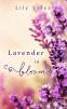 Cover Image: Lavender in Bloom